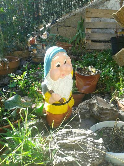 nuevo habitante en el jardin Garden Gnomo Fantasy Inmygarden Sexy