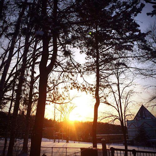 Sunset Winter