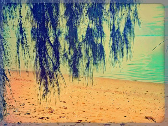 Beach Kauai♡ Scenery Ocean At The Beach Open Edit