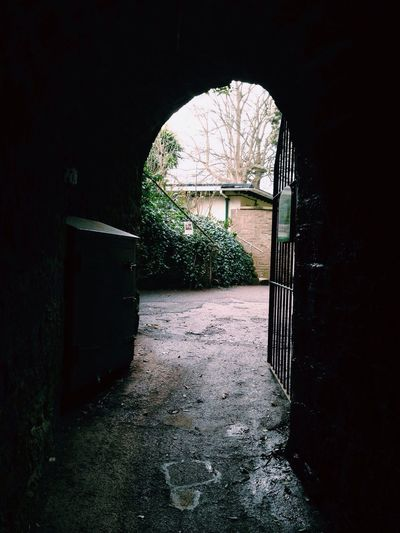 Mystery Mysterious Darkness And Light Taking Photos VSCO Devon Countryside Check This Out Gate Brick Wall Green Vscocam Travel Tunnel Darkness Light England