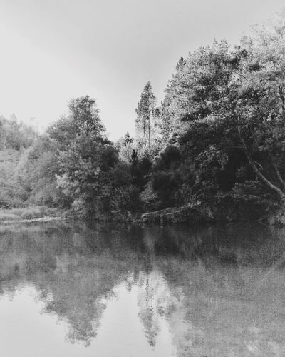 Rio Paiva, Portugal An Eye For Travel Tree Reflection Water Nature Outdoors Lake No People Tranquility Beauty In Nature Nature EyeEm Nature Lover Portugal_em_fotos Nature Photography Preto & Branco Eyeemblack&white Paiva Travel Destinations Travel Portugaloteuolhar Bnw_captures Bnw_life Bnw_society
