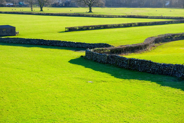 Coniston Fells Fieldscape Graphic Shadow Lake District National Park Patterns In Nature Beauty In Nature Coniston Day Fields Fields Of Green Golf Golf Course Graphic Shapes Grass Green Color Hedges Landscape Nature No People Outdoors Patterns Patterns And Designs In Nature Rural Scene Sand Trap Tree