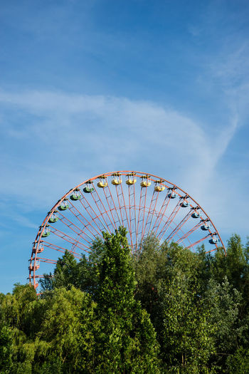 Ferris wheel among trees in an amusement park