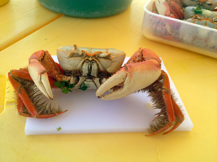 Close-Up Of Crab In Plate On Table