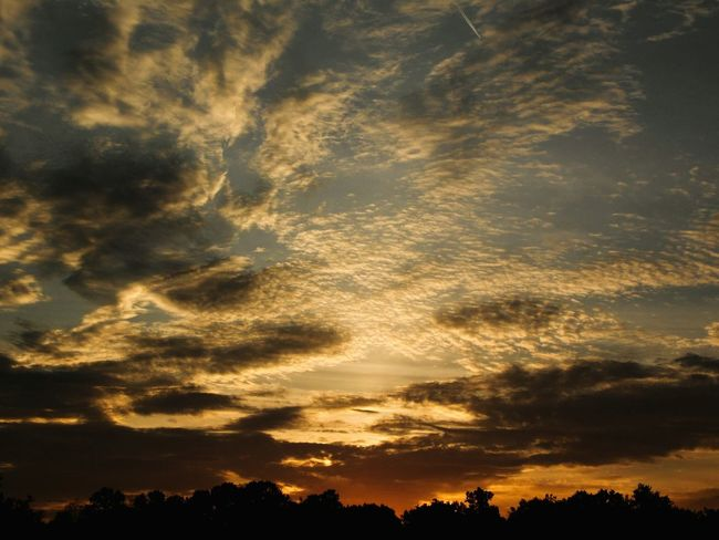 Dramatic Sky Sunset Tree Nature Cloud - Sky Beauty In Nature No People Silhouette Outdoors Landscape Backgrounds Day Sky Beauty In Nature Nostalgia Alabama InTheMiddleOfNoWhere Melancholic Landscapes Alabama Outdoors Growth Rural Scene Alabamasunset Freshness Beauty Tranquility