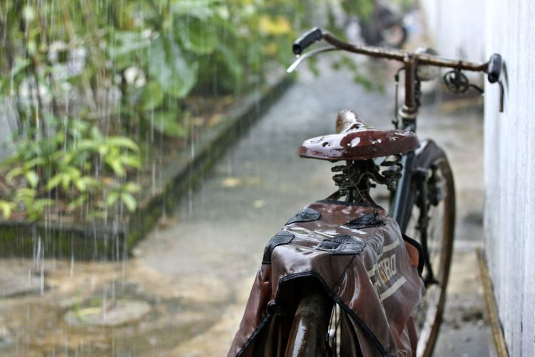 Bycicle Bycicle Under The Rain Day Gondola - Traditional Boat No People Old Bike Old Bycicle Old-fashioned Outdoors Rain Rain And Bycicle Rain Drops Rainy Day And Bycicle Rainy Days Water