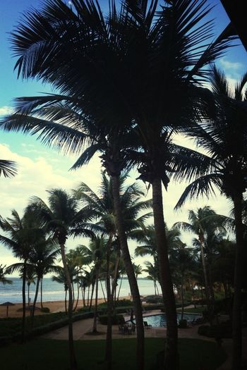 ❤ Beach&Ocean☀
