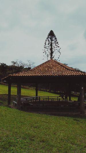 Parque do