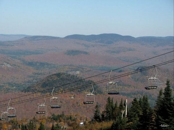 Beauty In Nature Fall Fall Colours Landscape Mont Tremblant, Qc Mountain Mountain Range Nature Outdoors Tree