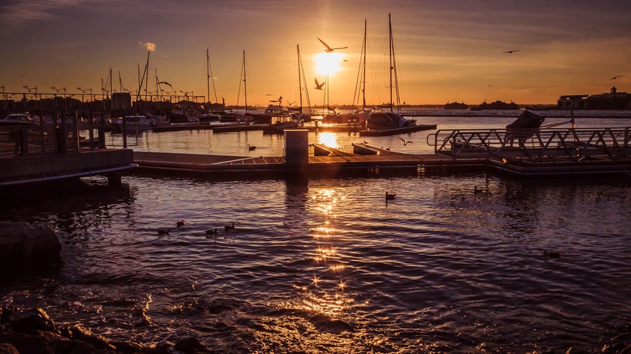 Watching the sun go down by the Brooklyn Marina in New York City. Beauty In Nature Birds Dusk Golden Hour Harbor Illuminated Marina Mode Of Transport Moored Nautical Vessel No People Outdoors Pier Reflection Sailboat Sea Starburst Sun Sunset Water Yacht