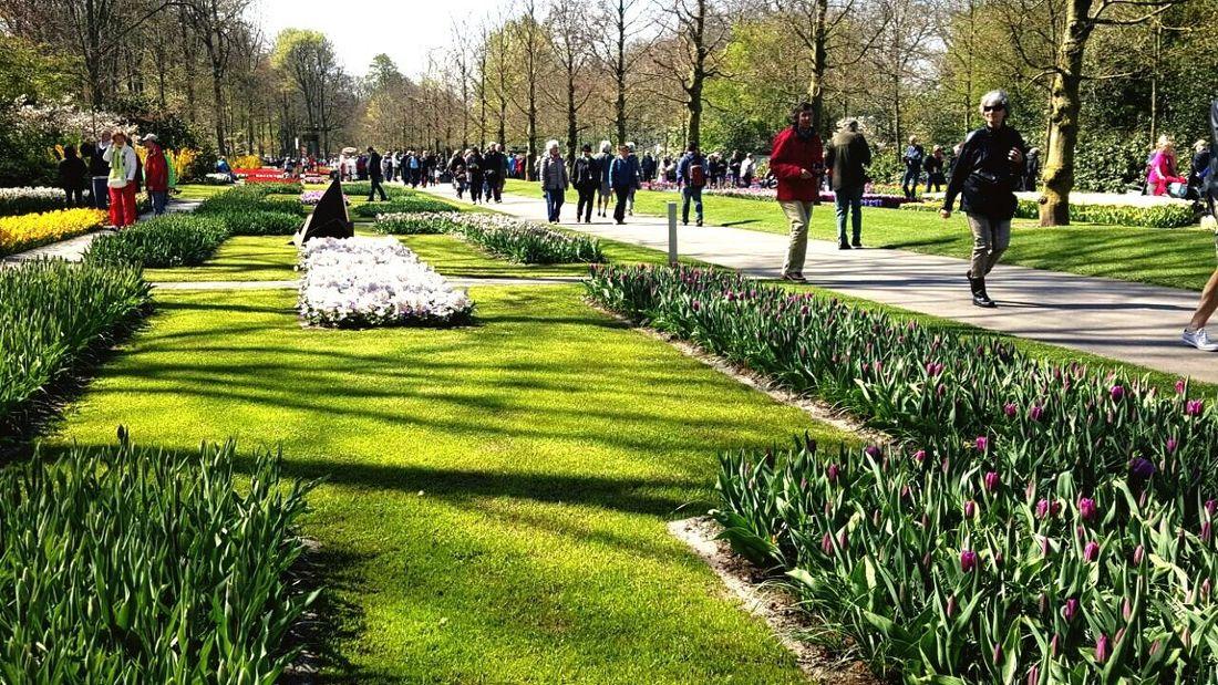 People Watching Keukenhof Garden Lizaratravelphotography Blending With Local The Traveler Flowerporn Travel Photography Amsterdam