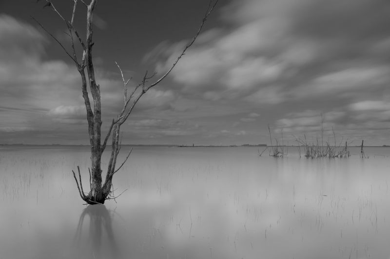 Blackandwhite Black And White Black & White Long Exposure Longexposure Longexposurephotography Longexposureoftheday EyeEm Best Shots EyeEm Nature Lover EyeEm Selects Sky Cloud - Sky Water Tranquility Beauty In Nature Nature No People Tranquil Scene Scenics - Nature Reflection Waterfront Day Non-urban Scene Lake Outdoors Plant Remote