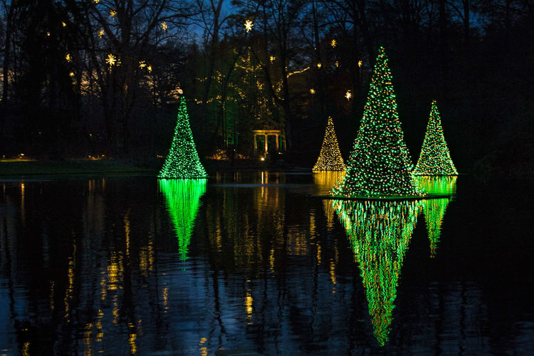 Merry Christmas to all, and to all a good night. Showcase: December EyeEm Best Shots Best Christmas Lights Christmas Tree Christmas Lights Christmastime Christmas Around The World Nightphotography Night Lights LongwoodGardens