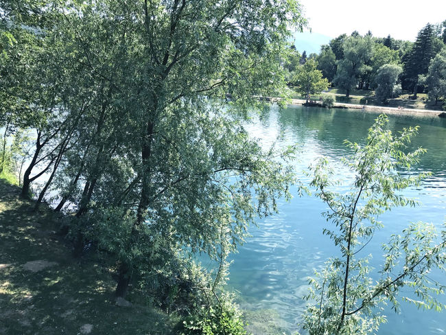 Travel to Europe under summer,river Una in the Bihac BIH Balkan Nature Trees Beauty In Nature Beauty In Nature Bihac Branch Colorful Day Forest Growth Lake Nature No People Outdoors Plant Reflection River Scenics Sky Summer Tranquil Scene Tranquility Tree Una Water