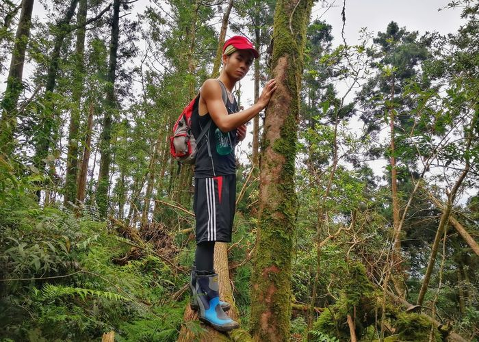Tree Casual Clothing One Person Low Angle View Standing Day Child Outdoors Children Only People Childhood Nature Grass Full Length Baseball Cap Sky One Boy Only Adult
