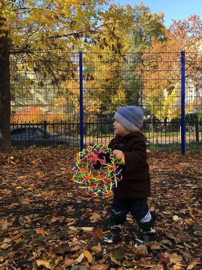 малыш площадка Детская площадка осень листья листва Autumn Tree Nature Природа One Person Baby Babyboy Playground Foliage Saint Petersburg Санкт-Петербург