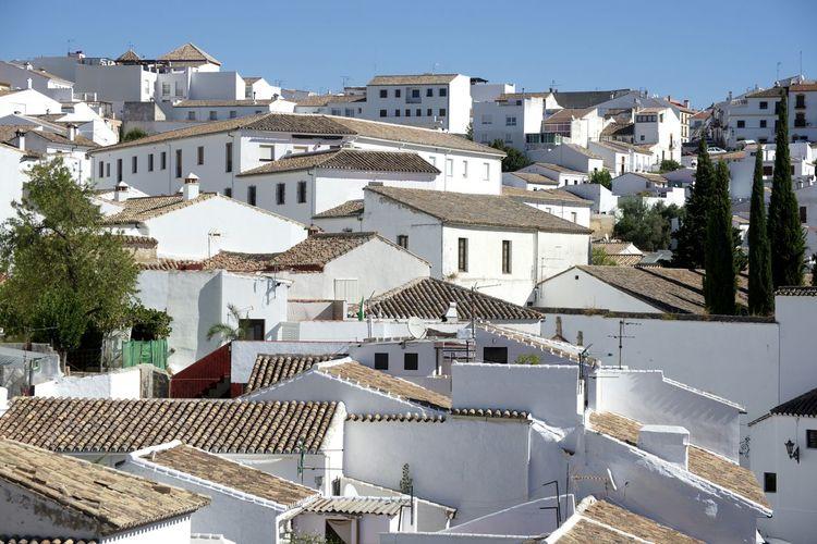 ...Dächer ohne Ende... Ronda SPAIN Dach Weiße Häuser España Aussicht