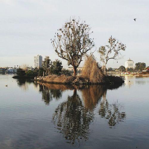 Good morning, Lake Merritt, you look just marvelous today. Lovenotesforoakland