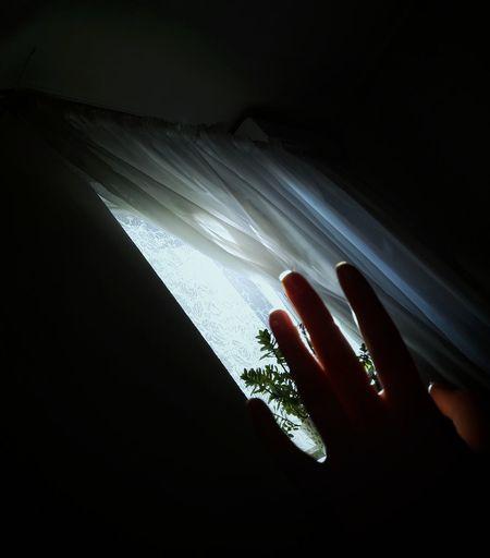 Hi Morning Hand Happy Yeeeeeeeeeah Sun Sunny Like