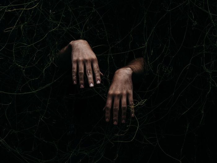 Cropped Hands Emerging From Plants At Night