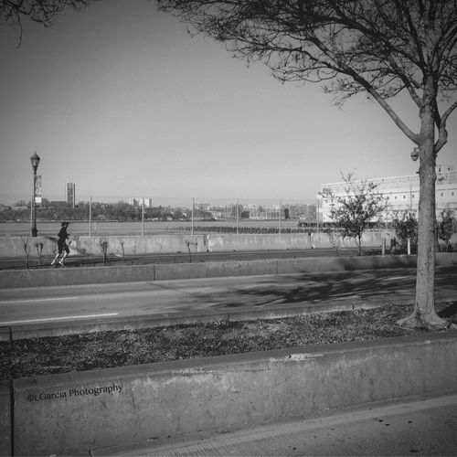 West side highway. West Side Highway EyeEm Best Shots IPhone Photography Contrast Streetphoto_bw Streetphotography Blackandwhite Photography Street Photography Black And White Photography Black And White EyeEm Best Shots - Black + White New York City NYC NYC Photography LGarciaPhotography Monochrome Aukey 3 In 1 Lens IPhone Shadow Architecture Details Lines Angles Trees High Way Highway