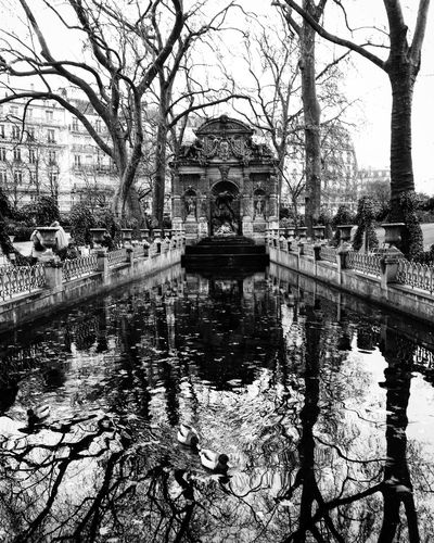 Tree Water Built Structure Architecture Reflection Building Exterior Outdoors Bare Tree Place Of Worship Travel Destinations Day Sky Nature No People Jardin Du Luxembourg Fountain Architecture Medici