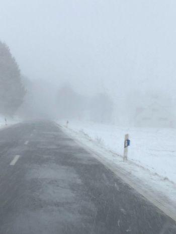 Snowfall Fog Winter Walking Rear View Weather Adventure Shades Of Winter