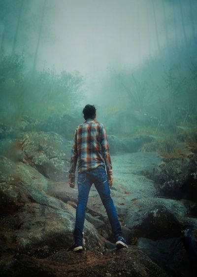 Rear view of man looking at forest