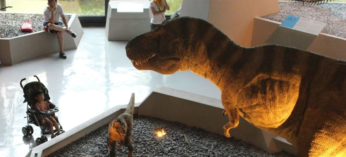 Beautiful and terrible dinosaurs. The Moment - 2014 EyeEm Awards Taichung Dinosaurs