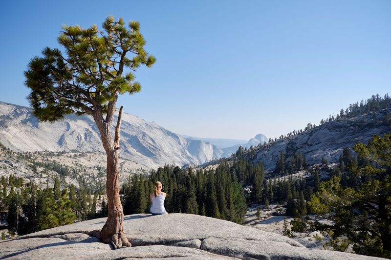 Rear view of woman sitting by tree on rock against sky
