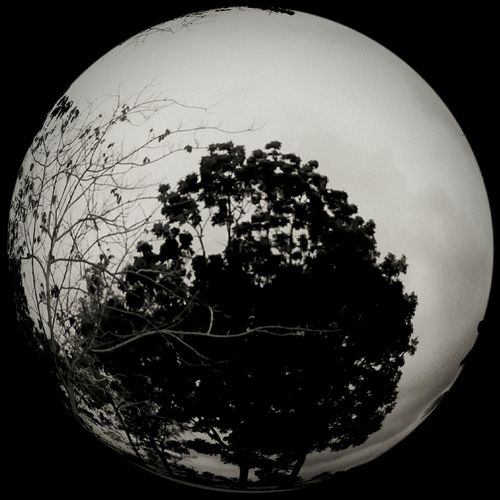 Own fisheye photography Likeamoon Fisheye DarkSideOfTheMoon Lightsout Check This Out First Eyeem Photo