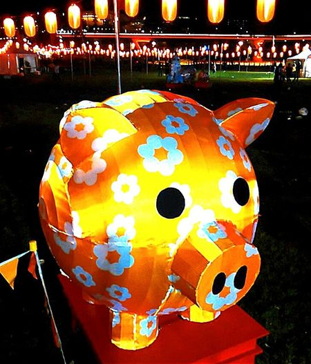 OzAsia Festival Check This Out Moon Lantern Festival Taking Pictures Taking Photos Festival Lanternfestival Pigs CityOfAdelaide Piggy Festivalphotography Pig Inflatables Festivals Elder Park Inflatable  Inflatable Pig Nightphotography Night Photography
