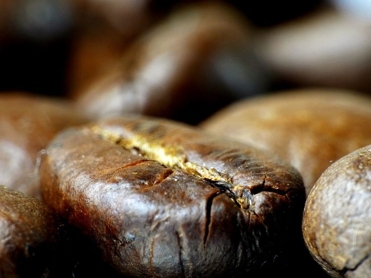 Coffee bean close-up Coffee Coffee Bean Coffee Beans Roasted Kaffee Kaffeebohne Food Delicious EyeEm Selects Close-up Indoors  No People Day Food Stories The Still Life Photographer - 2018 EyeEm Awards