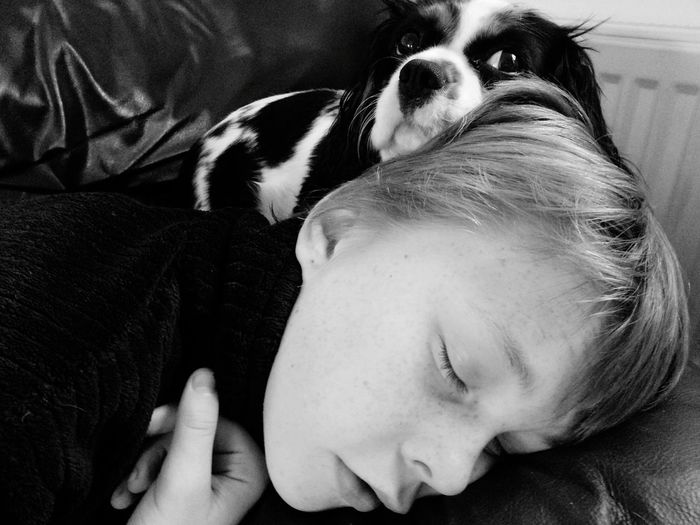 Close-up of sleeping boy and a dog
