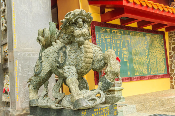 Detailed Chinese design with Gods statues in gold including walls sculptures of dragons and horses at Wenwu Temple in Puli County of Taiwan Kylin Sun Moon Lake Wenwu Temple Wenwu Wenwu Temple Animal Representation Architecture Art And Craft Bas Relief Bas Relief On Brownstone Building Exterior Built Structure Chinese Dragon Day Dragon Kirin No People Outdoors Qilin Sculpture Statue