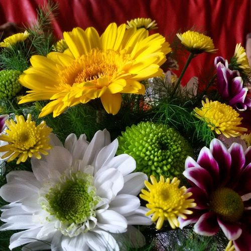 Happy Nameday Mommy Loveyou flowers nature