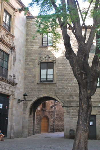 Architecture Barcelona Barcelona, Spain Building Building Exterior Buildings Built Structure Catalonia Catalunya City Day No People Old Buildings Old Town Outdoors SPAIN Street Street Photography Streetphotography Travel Destinations Tree