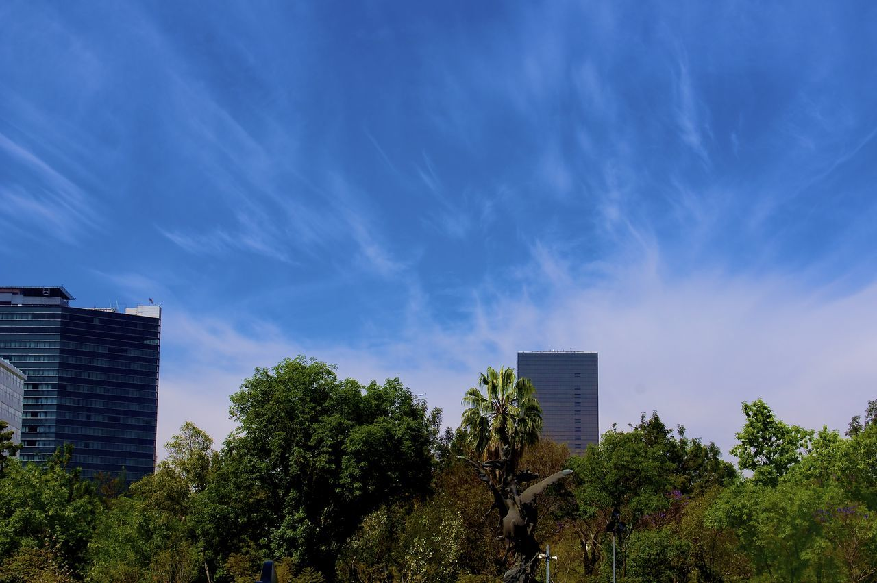 Buildings And Trees Against Sky