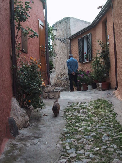 Building Exterior Built Structure Cat Old Village One Person Outdoors Posada, Sardinia Stone Street The Way Forward Walking