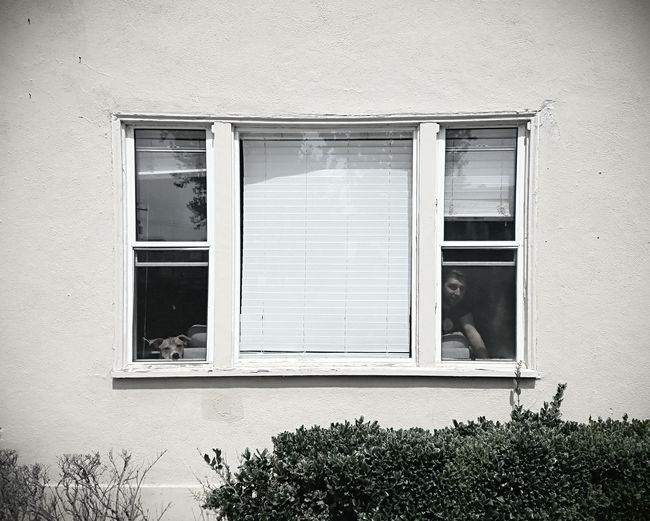 Window Building Exterior Architecture Outdoors Day Man Dog Manandhisdog LongBeachCa Adult Springtime Domestic Animals Trapped