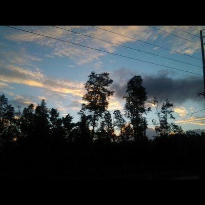 Good Morning ❤ its Aloha Friday. Luckywelivehawaii Blessed  Bigislandlove HiLife 808love Beautifulxhi Myhome Morning Drive Naturesbeauty Allnatural Nature Instaphoto Puna NoEdits  Thrutheohiatrees