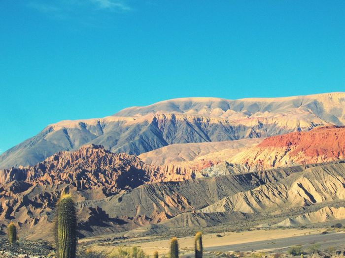Blue Desert No