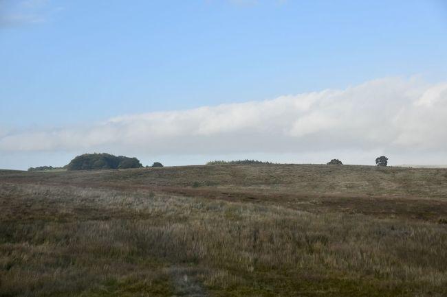 Taking Photos Remote Landscape Motorway View Trees Nikon D5500