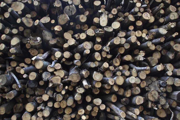 Backgrounds Large Group Of Objects Nature Outdoors Wood - Material Woodpile