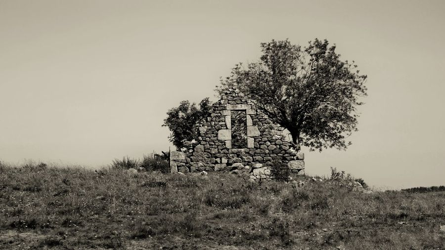 Aubrac EyeEm Best Shots EyeEm Nature Lover Architecture Countryside Landscape Aubrac Nature Nature_collection Nature Photography Sepia Old Buildings Aveyron Wild Rural Scene Rural Ruined House Ruined Pixelated Tree Sky Tranquil Scene Farmland