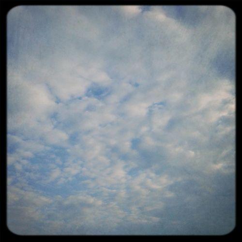 Cloudy Sky Blue Sky Outside Pic