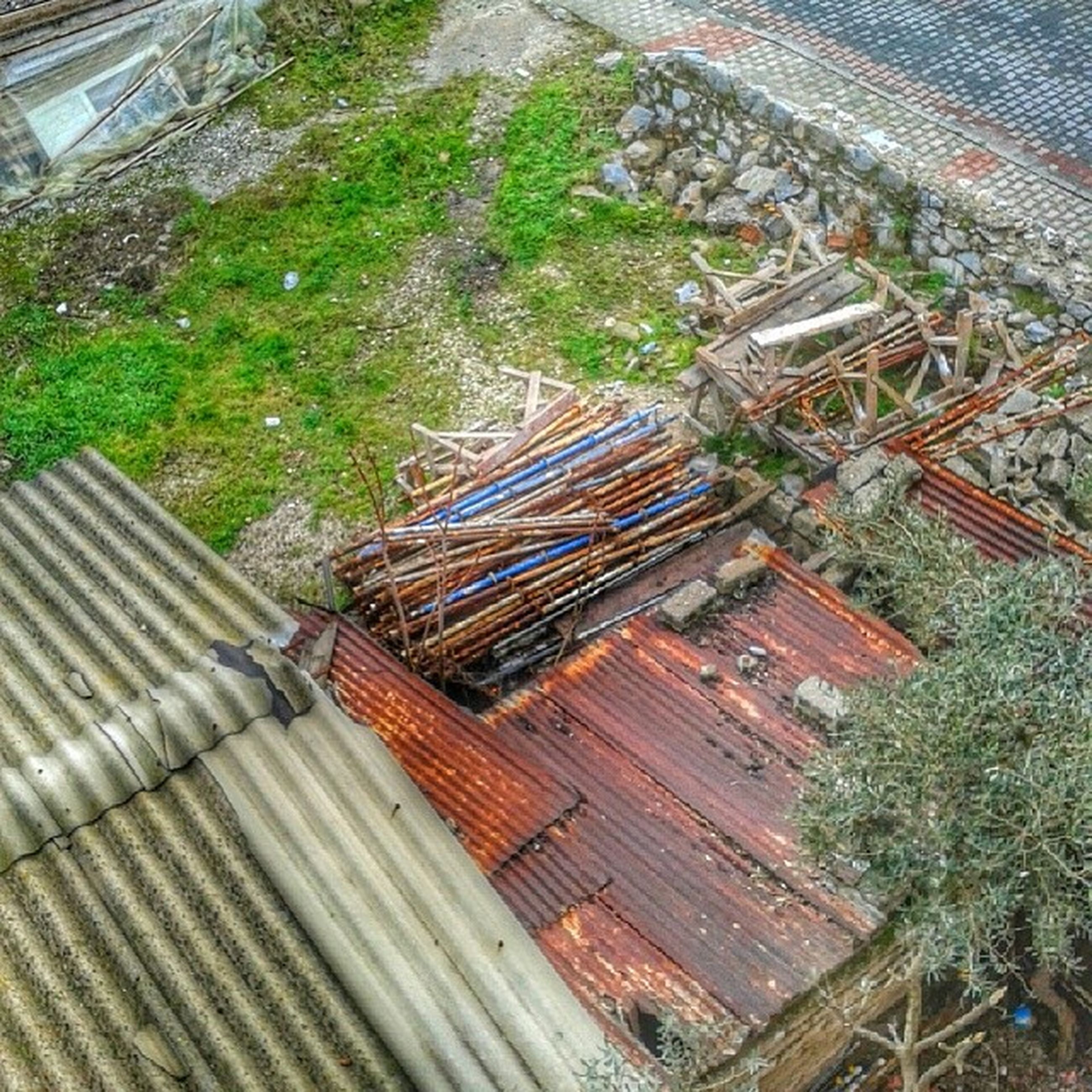 high angle view, built structure, tree, building exterior, architecture, roof, steps, outdoors, day, house, no people, steps and staircases, tilt, nature, sunlight, green color, staircase, wood - material, growth, landscape
