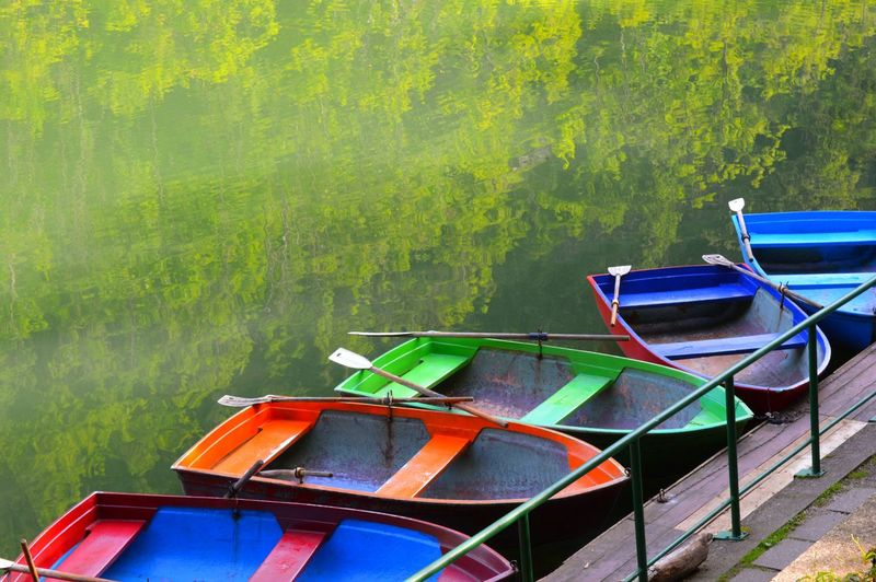 Colorful boats in the Lake. Europe Hungary Forest Landscape Wildlife Adventure Outdoor Travel Photography Colorful Boat Lakeview Reflection Quiet Moments Slow Life Nature Landscape Outdoor Tree Gondola - Traditional Boat Nautical Vessel Moored Pedal Boat Oar Stilt House Lakeside Tree Trunk Countryside