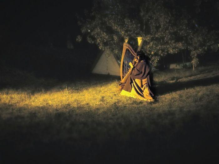 Light And Shadow Nightphotography Night Harp Yellow Tranquility Tranquil Scene Black Grass Calm Light Beam Non-urban Scene