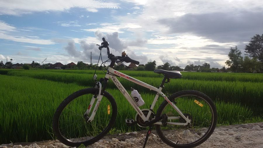 Meet the green Cycling Lover Ricefield CyclingUnites
